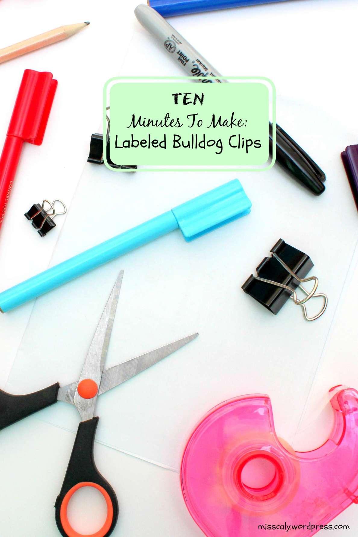 ten mins to make labelled bulldog clip