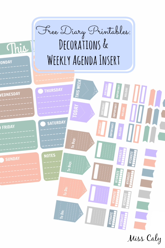 Free Diary Printables! Decorations and Weekly Agenda Insert from Miss Caly
