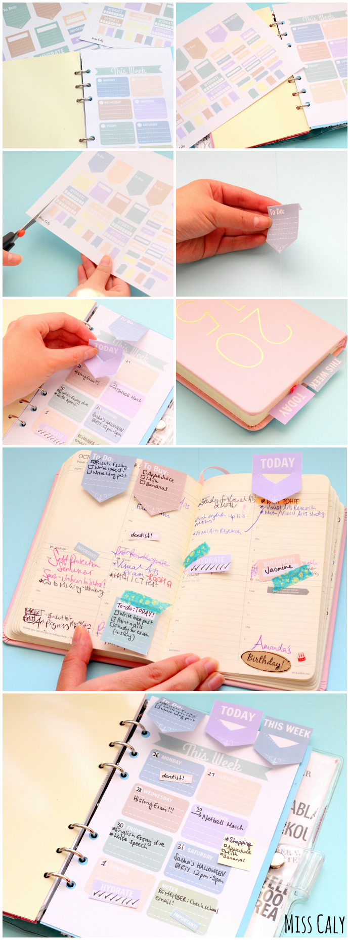 Free Planner Decorations and Weekly Diary Insert! By Miss Caly