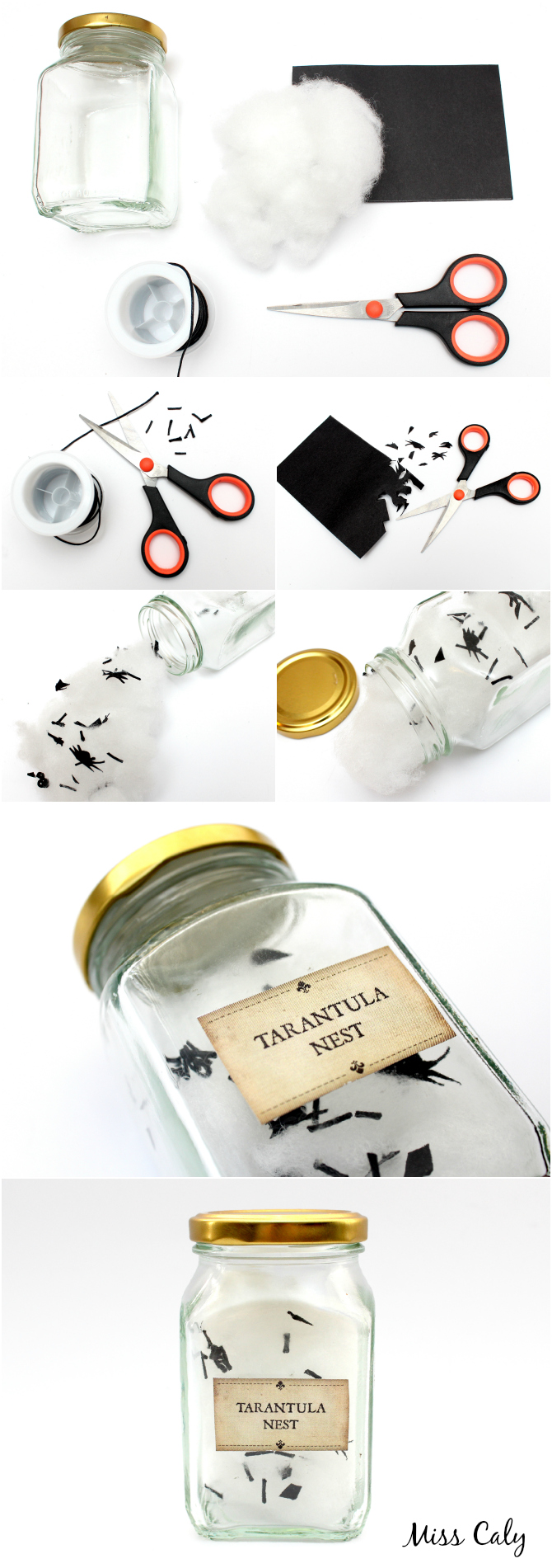 Tarantula Nest Jar DIY