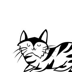 Cute Minimal Cat Wallpaper 1 - Miss Caly