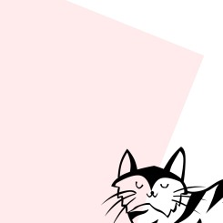 Cute Minimal Cat Wallpaper 3 - Miss Caly