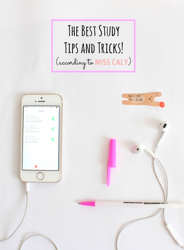 My favourite tips and tricks for studying to get you through the year! - Miss Caly