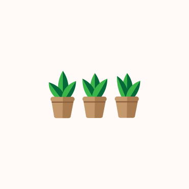 little pot plant illustration miss caly