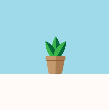 sky pot plant illustration miss caly