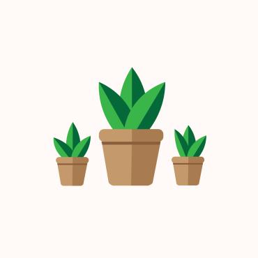 triple plant illustration miss caly